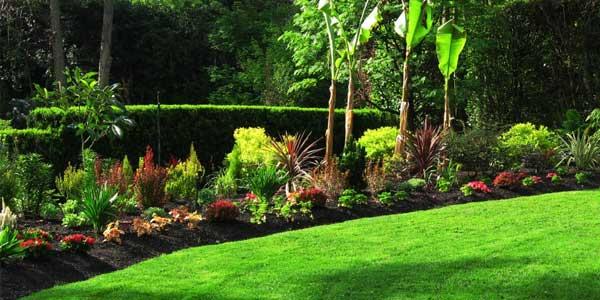 Il giardino e l'orto di Maggio